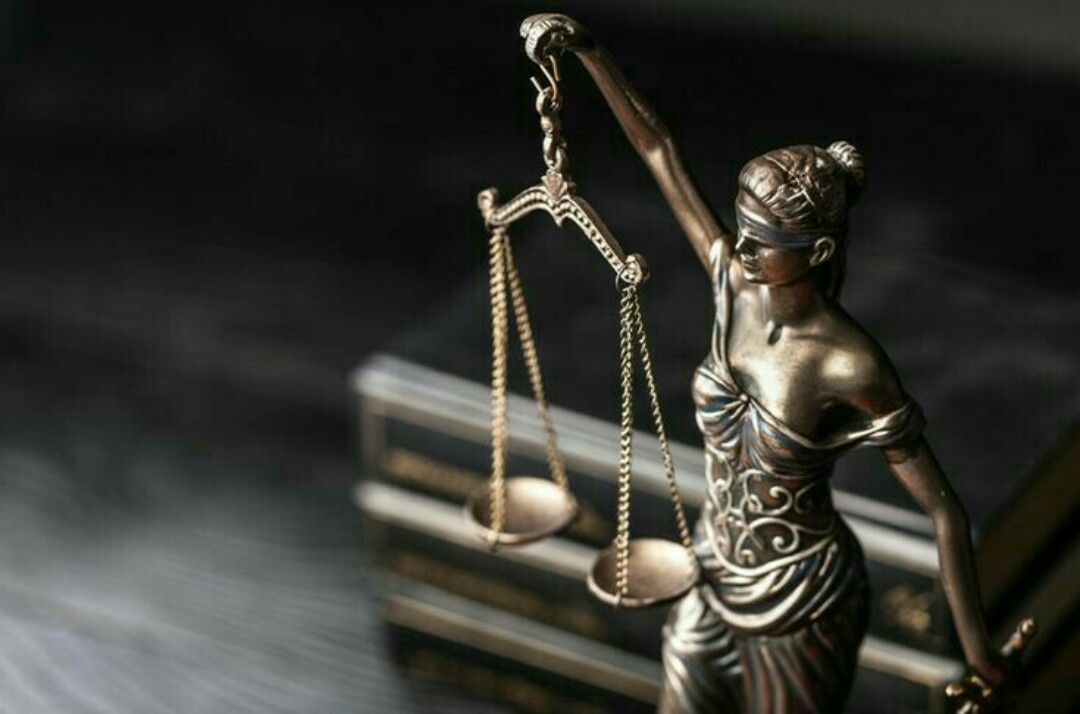 صورة القانون لا يحمي المغفلين